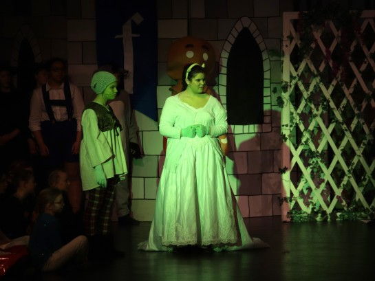 princess fiona 2